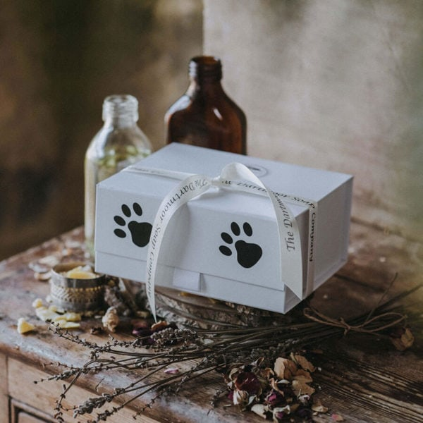 A Gift Set For Dog Lovers